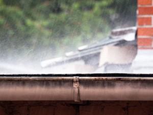Wind Driven Rain in Texas