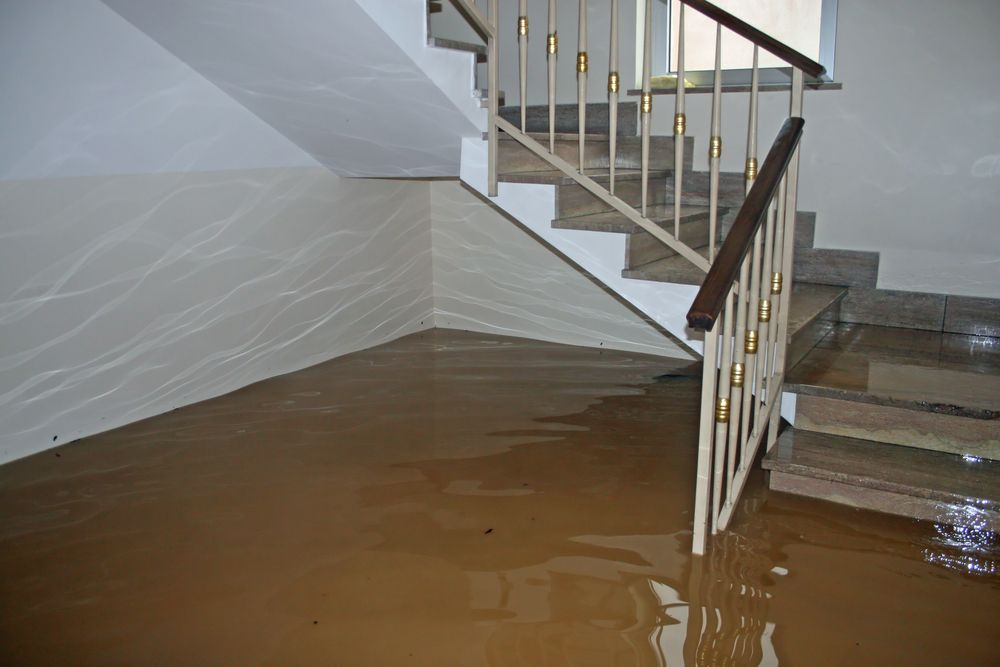 Water Damage Insurance Claim